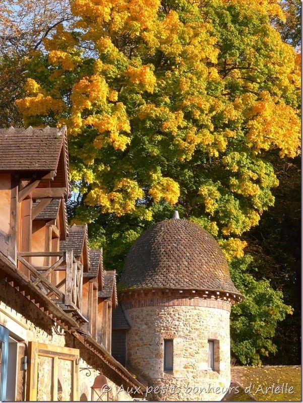 Abbaye des Vaux de Cernay (25)