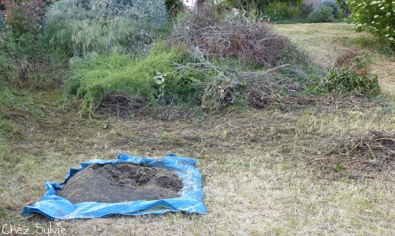 Potager permaculture 10