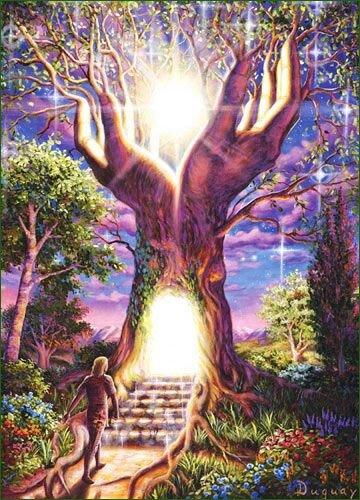 NG010_arbre-lumiere
