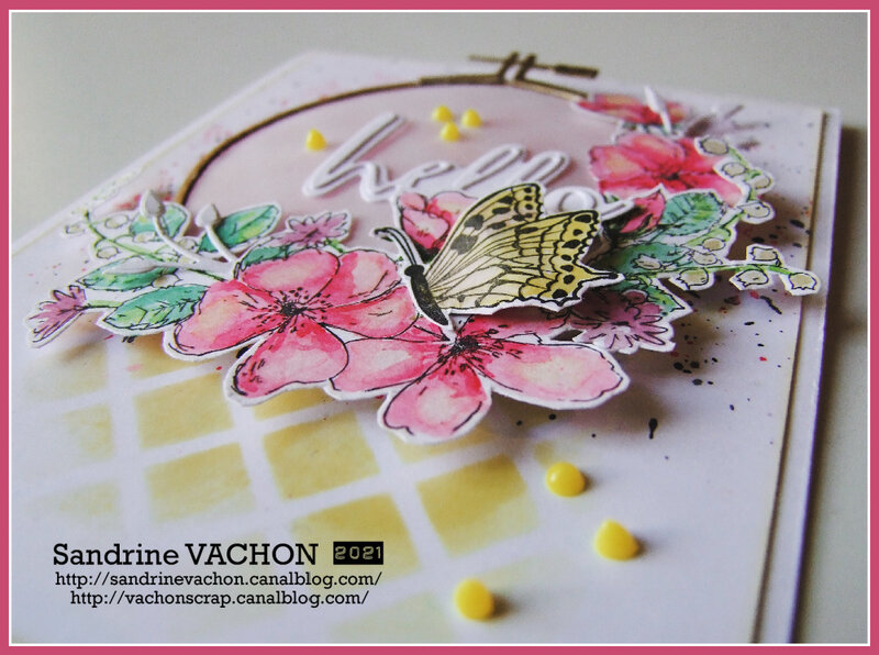 Sandrine VACHON 680 PCC (4)