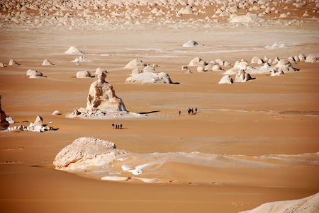 desert_blanc160