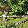 la roselière du wooggraben