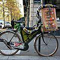 vélo reptile_7184