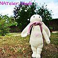 Dans mon jardin il y a ... un petit lapin