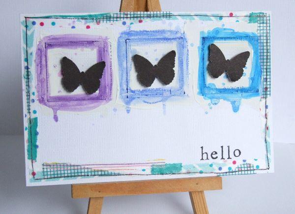hello papillon bleu