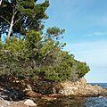 Balade au bord de la méditerranée