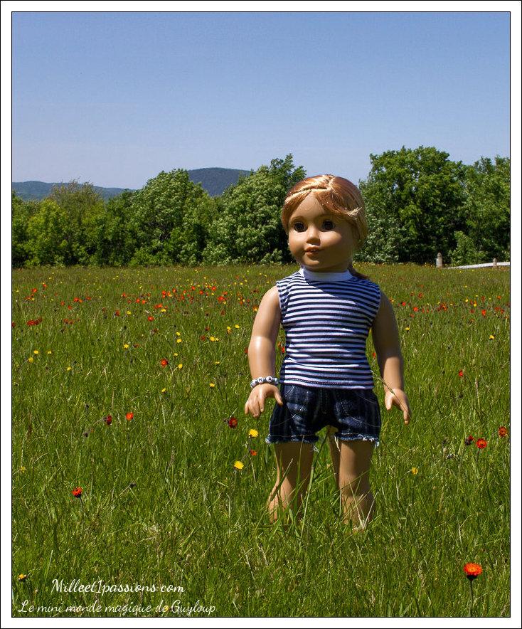 Charlotte dans les épervières + fond d'écran cadeau - Charlotte in the wild flowers + gift wallpaper