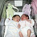 Le 10 septembre....2004 naissance des jujus