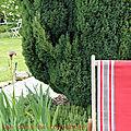 jardintransatrouge