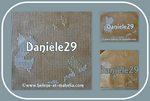 danièle29_saljuil_col1