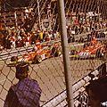 1974-Monaco-312 B3-1ere ligne