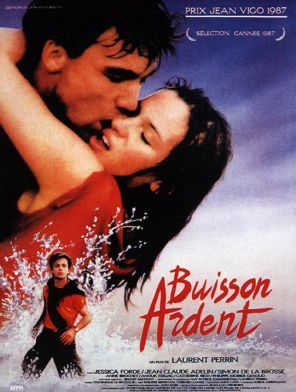 buisson_ardent