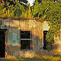 ruine à Roseau