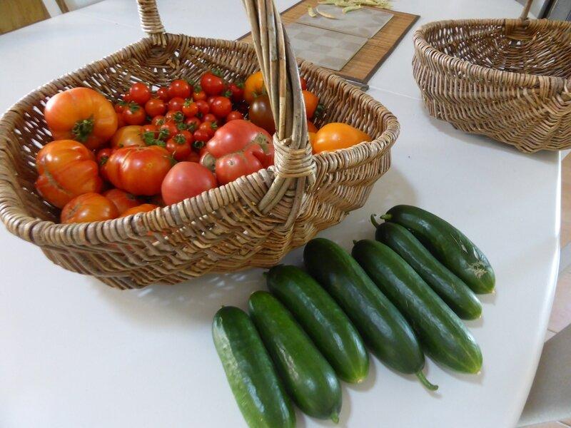 21-tomates, concombres