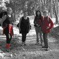 Groupe couleur contrastée 2 - Trajet St alban sur Limagnole - Aumont Aubrac