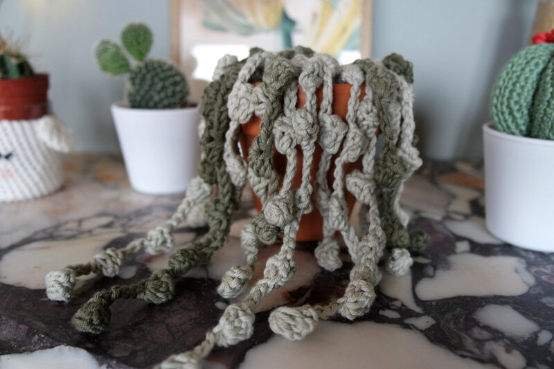 plante crochet 03