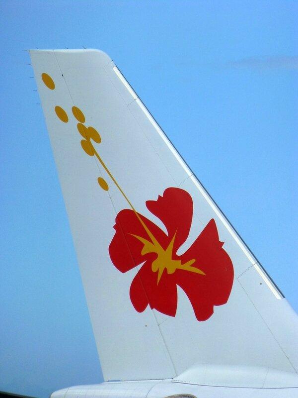 Air Calin et sa fleur d'hibiscus