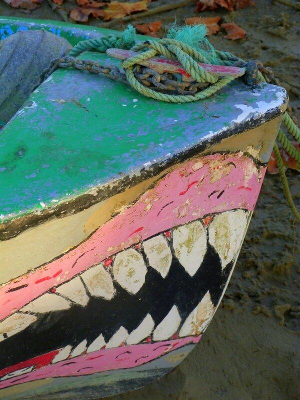 Les dents de la mer 8