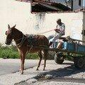 Le moyen de transport encore très utilisé
