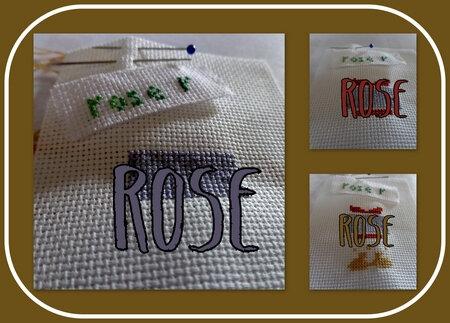 rose_salsept19_col1