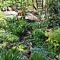Windows-Live-Writer/Joli-printemps-au-jardin-_601C/20170402_133311_5