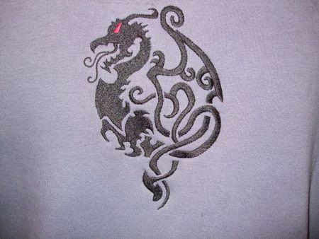 dragon_xavier2