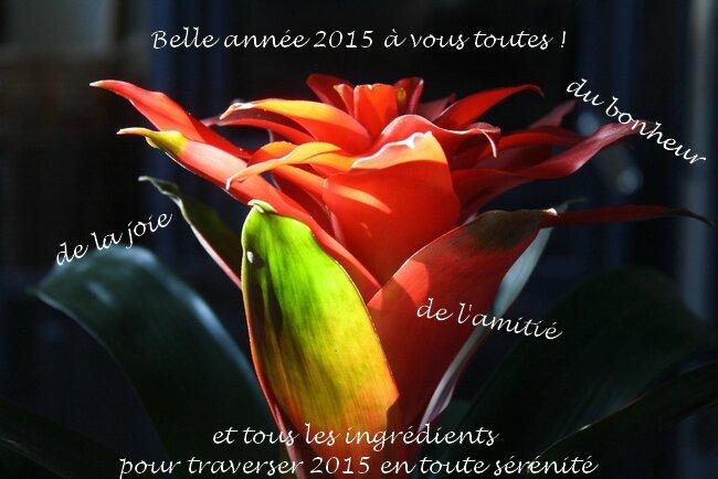 Vive-2015