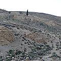 Jordanie - la forteresse de shaubak