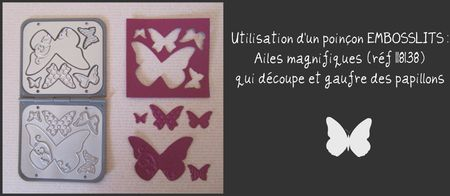 Poin_on_Embosslits_Ailes_magnifiques