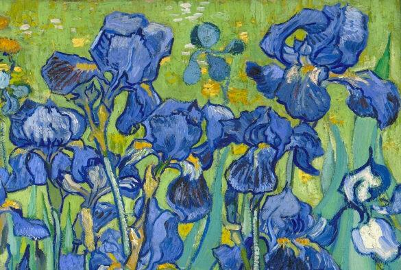 Van Gogh iris détail2w