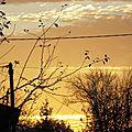 Lever soleil 1711159