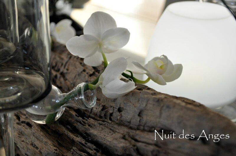 Nuit des anges décoration de table Japonaise 011