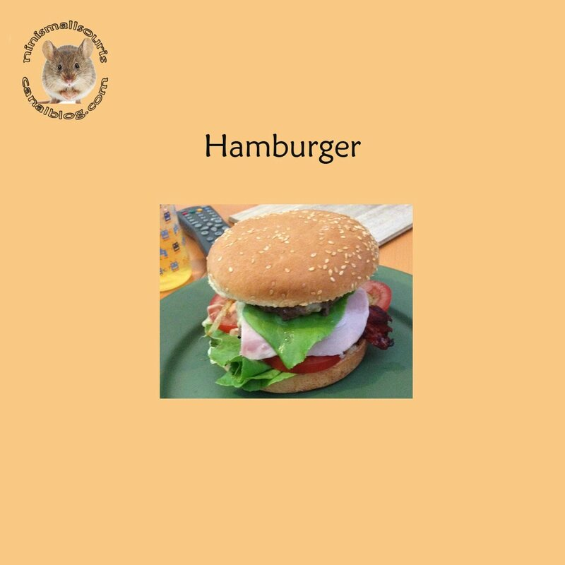 hamburger Ced