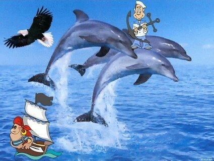 dauphinstubes