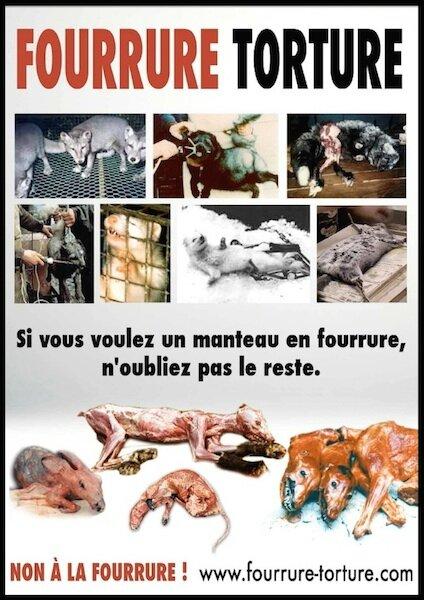 journee sans fourrure fourrure torture 2