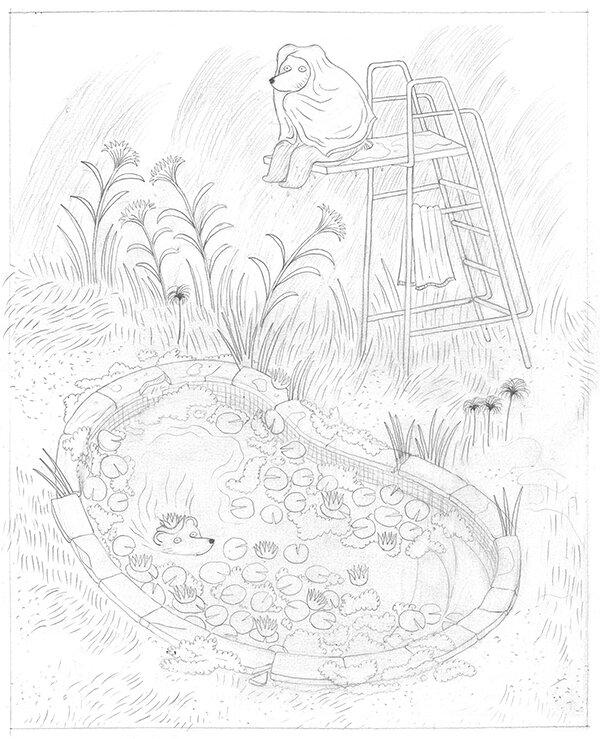 crayonné ours blog