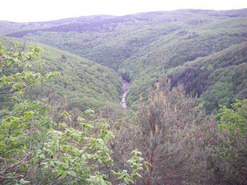 ephemera_danica_blog_agout_vallée