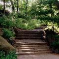 Escaliers verts
