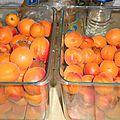 Abricots par ci...abricots par là...