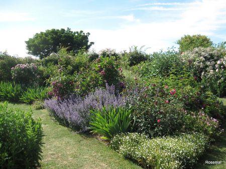 Jardin de Morailles (7)