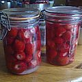 J'ai pas la pèche, mais on a des fraises ! vrac du 24 juin