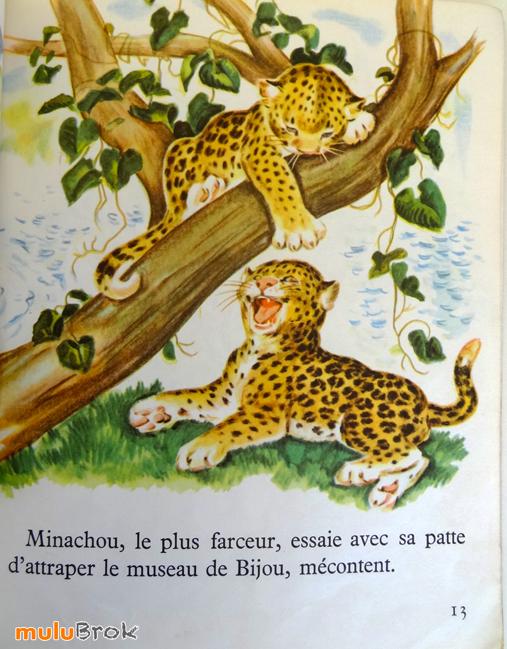 Pitou-la-petite-panthère-05-muluBrok