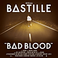 Things we lost in the fire - bastille (2013)