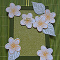 Carte mobile fleurs de frangipaniers dont 1 vidéo