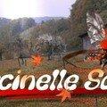 coccinellesonia automne 07