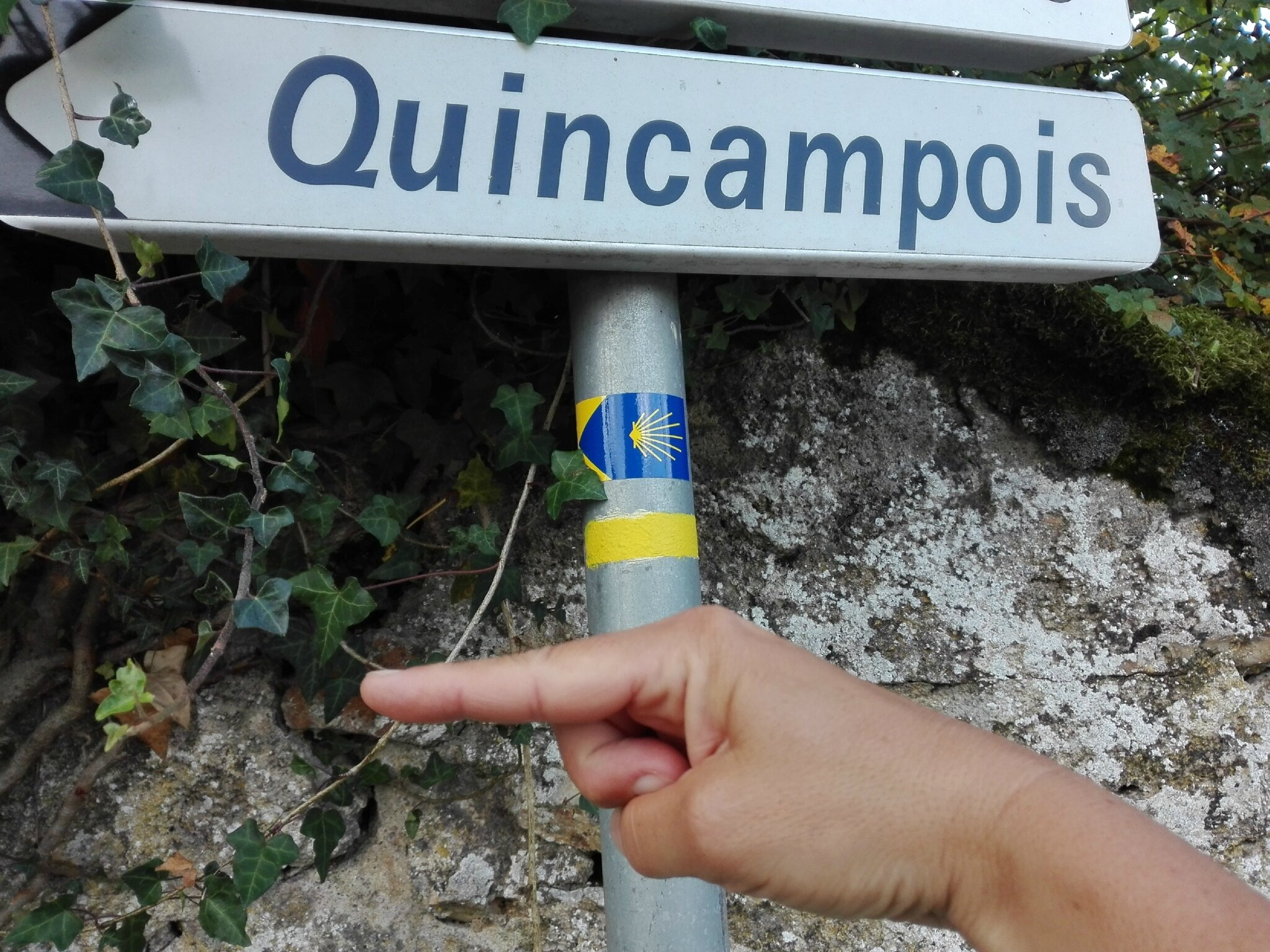 Suivez les flèches bleues Monsieur Quincampoix