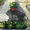 Entretien de sépulture Pensées et Chrysanthème en coupe