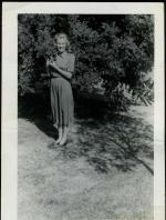 1947-CA-tree-MM-010-1a