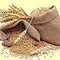 Nogent-le-républicain le 27 mars 1795 : fourniture du pain au prisonniers de guerre et grains.