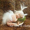 951- petit ange dans son nid ( 40€ )